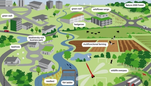 Building a narrative for blue-green infrastructure, overcoming financial and governance barriers