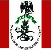 """Nigeria: """"We will enhance our enlightenment campaigns,"""" says NDLEA on illegal drug trading"""
