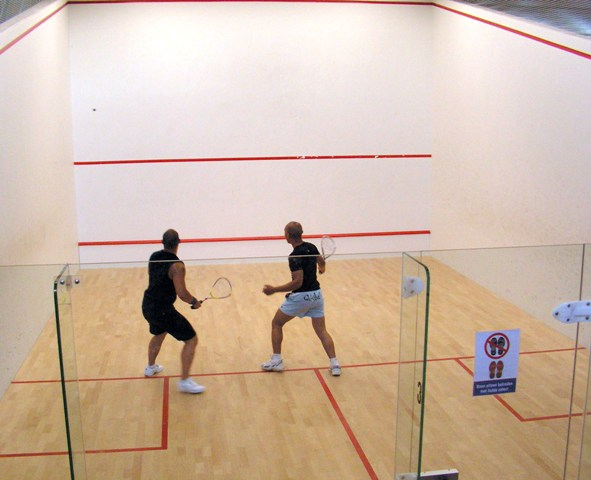 SRFI-HCL tie-up for improving Indian squash