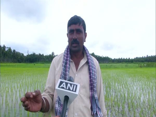 Karnataka: Shivamogga farmers hit hard by deficit rainfall in Western Ghats