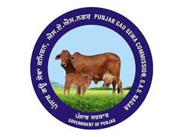 Punjab Gau Sewa Commission welcomes Allahabad HC's observation on cow