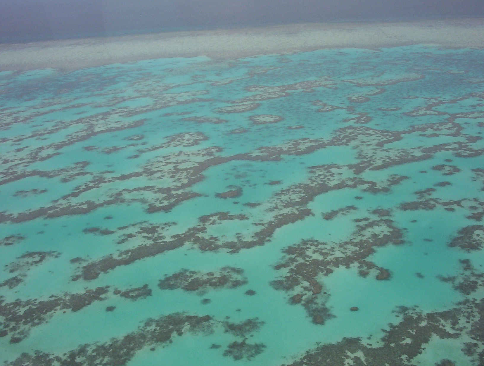 Science News Roundup: Australian scientists find huge new healthy coral reef off northern coast; Chinese spacecraft set for Mars landing in May and more