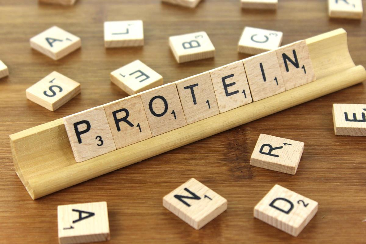 Increase your daily amount of protein intake to prevent risks of disability