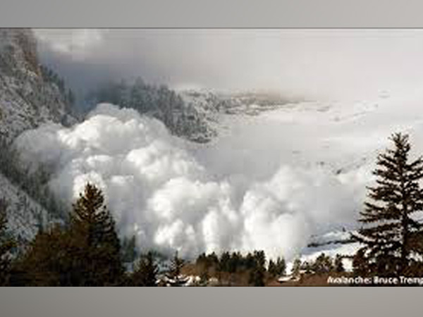Death toll in avalanche in Uttarakhand's Chamoli rises to 11