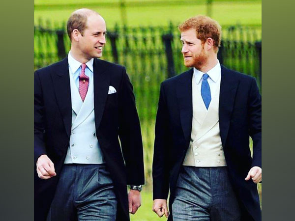 Prince William, Prince Harry mutually finalise statue design of Princess Diana
