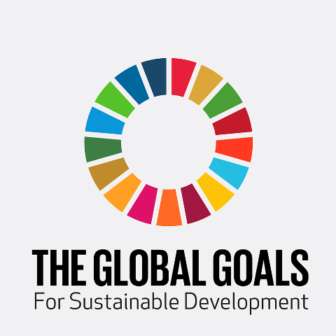 Better data better decisions: Leveraging new data sources for sustainable development goals