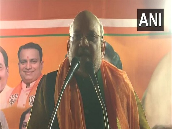 Those supporting Shaheen Bagh are in awe of their vote bank: Amit Shah