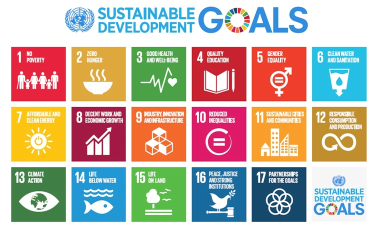 Six new officialSDG Advocatescommitted to pursue 17 goals