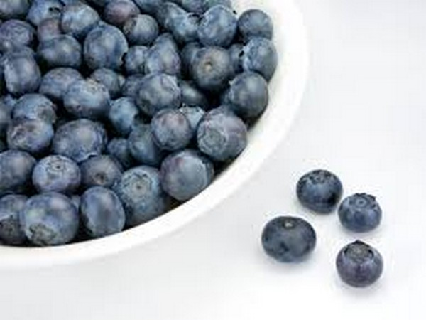 Here's how blueberry-enriched diet may help women's muscle growth, repair