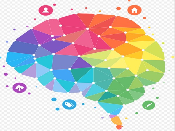 Study looks for the source of creativity in the brain