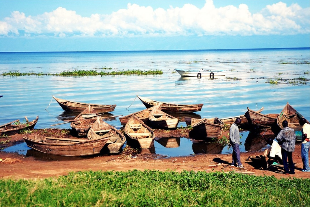 Lake Victoria  – Why Africa's largest lake looks ugly
