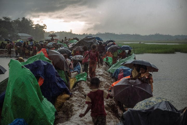 UN refugee agency appeals for rescue of Rohingya stranded at sea