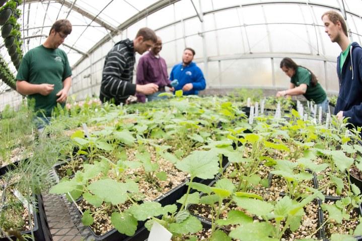 France pledges 1 bln euros for frost-hit farms