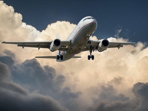 Bird hit damages engine blades of Delhi-bound flight, plane returns to Guwahati with 99 passengers