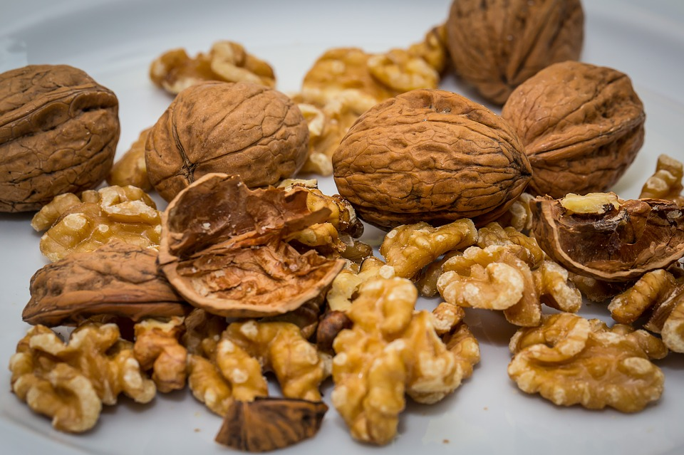 News Roundup: Squirrels' stash of winter walnuts causes car chaos