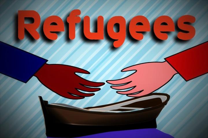 INTERVIEW-Acting head of U.N. Palestinian refugee agency says U.S., Israel working against it