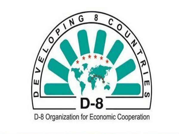 10th summit of D-8 on economic cooperation kicks off virtually