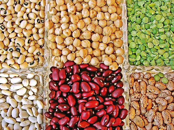 Study uncovers clues on evolution, diversification of legumes
