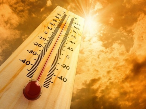 Record-smashing heat extremes may become much more  likely with climate change -study