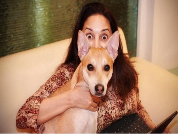 Madhuri Dixit clocks 22 million followers on Instagram
