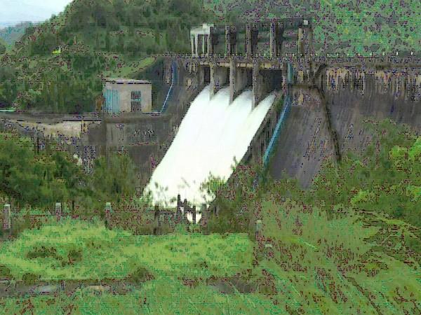 K'taka: 25,000 cusec water released from Bhadra Dam following heavy rainfall