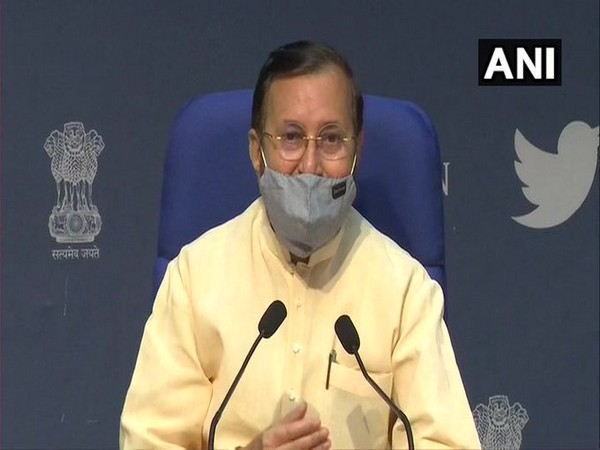 Pollution problem can't be resolved in a day, continuous efforts needed: Javadekar