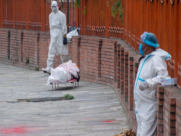 Russia registers 8,115 COVID-19 cases in past 24 Hours