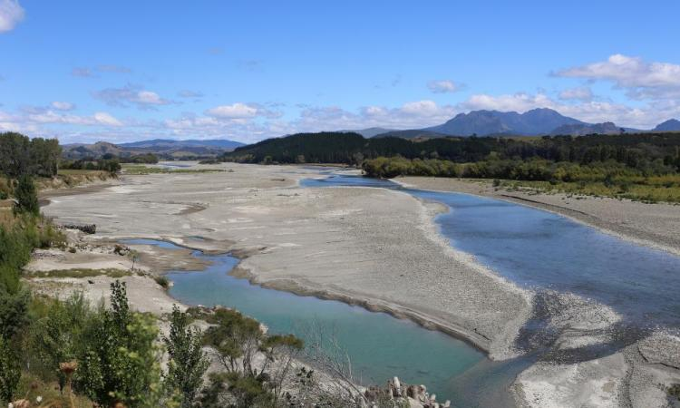 $5M boost from One Billion Trees Fund to address Waiapu catchment issues