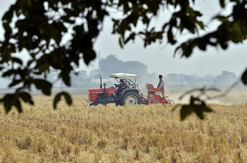 Haryana farmers destroy crop in protest against agri laws
