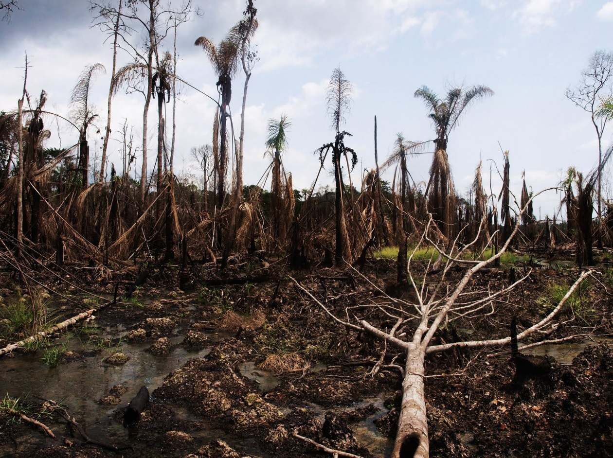 How oil extraction in Niger Delta affects climate, residents' health & newborns