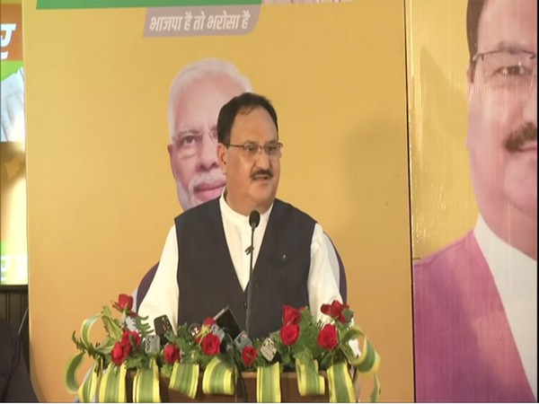 Party workers in Bihar should remove roadblock between government's schemes and people: JP Nadda