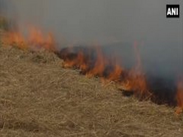 UP: Fine to be imposed for stubble burning in Jhansi
