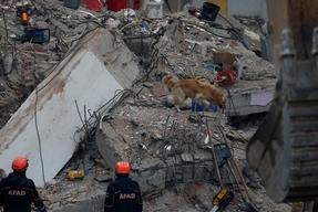 China building collapse: 11 rescued from rubble, 9 still trapped