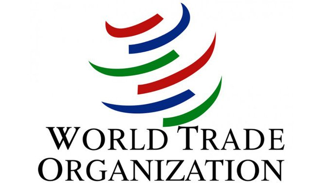 Fish talks: U.S. official says successful talks crucial for WTO