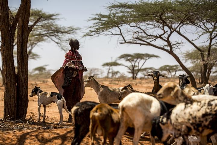 FROM THE FIELD: Uganda conflict survivor helps communities find 'ways forward'