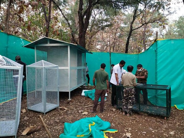 Isolation ward set up at transit treatment center in view of bird flu in Nagpur