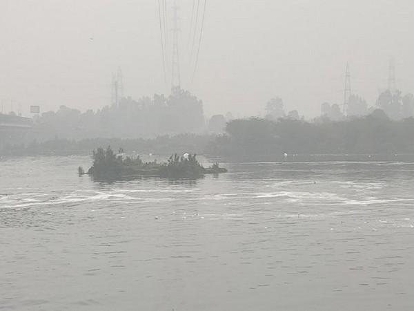 Raghav Chadha writes to ML Khattar over lesser water, high ammonia levels in Yamuna