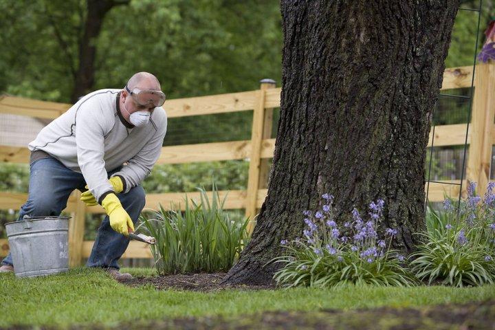 Nitrogen fertilisers least effective for grass growth during winter