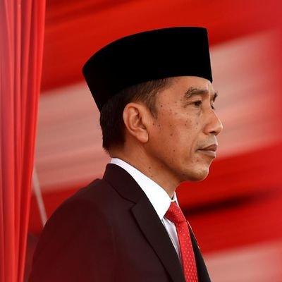 Widodo pledges health, economic reforms amid virus crisis