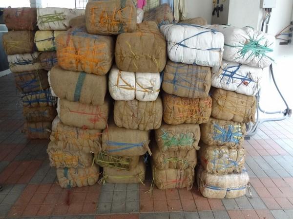 DRI Hyderabad seizes 1554 kgs of ganja