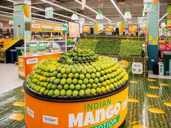 Mango varieties from north India on showcase in Dubai