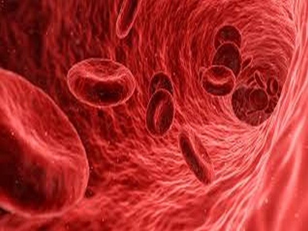Study fouses on exploring connections between ovarian cancer and blood cells