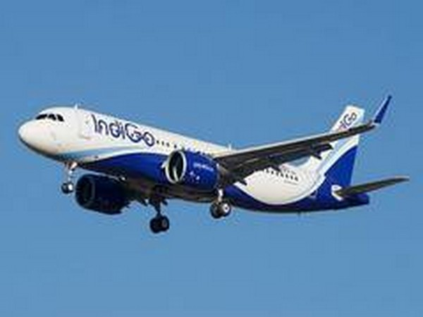 IndiGo to cancel some flights to Dubai, Sharjah, Abu Dhabi
