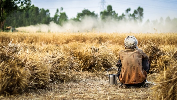 Climate-Smart Agriculture: a potential pathway to address climatic risks