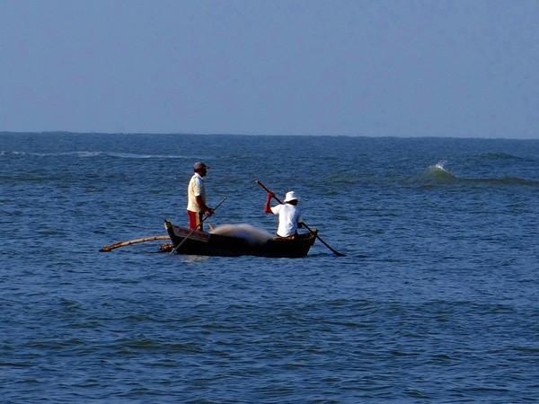Sri Lankan Navy apprehends nine Indian fishermen