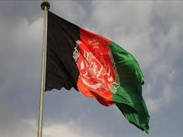 Afghanistan peace talks under threat as major Taliban spring offensive takes shape