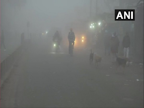 Visibility affected due to thick fog in parts of North India