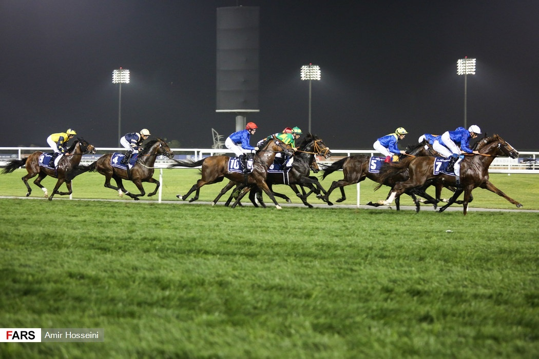Horse racing-Dubai World Cup meeting to go held 'without paid spectators'