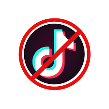 TikTok cannot stay in current format in US: Treasury Secretary Steven Mnuchin