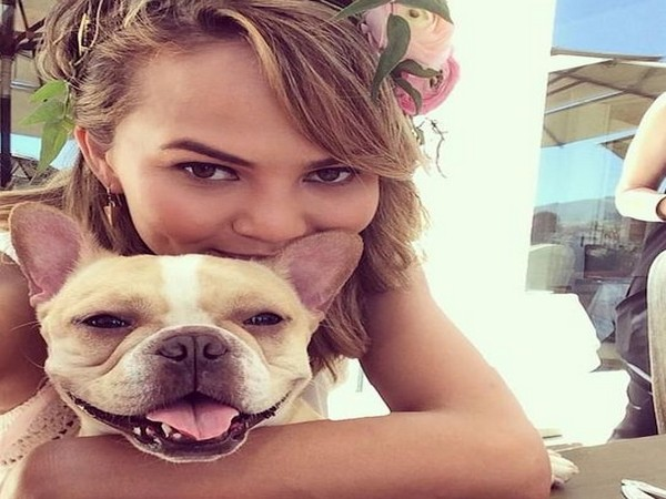 Chrissy Teigen mourns death of her French bulldog Pippa